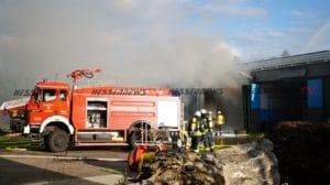 homberg brand 11072021016